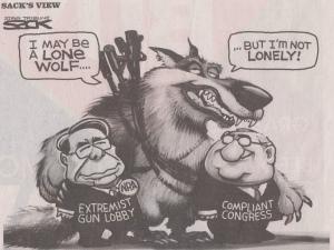 big guns and congress