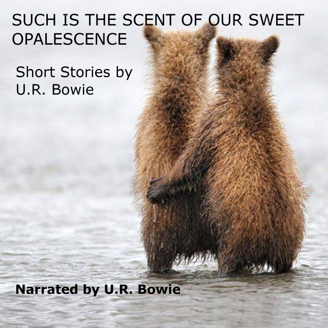 Bears Look Out To Sea Cover of audiobook